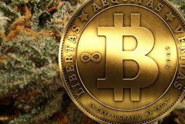 Cannabis Security Firm Goes Bitcoin to Solve Industry's Banking Problem
