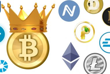 Bitcoin Maximalism Remains as Competitors Rise