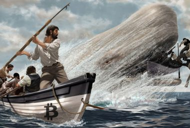 Bitcoin 'Whales' Vote in Favor of Larger Tx Blocks