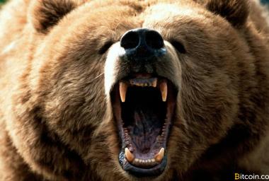 Markets Update: Bitcoin's Battle Against the Bear Market