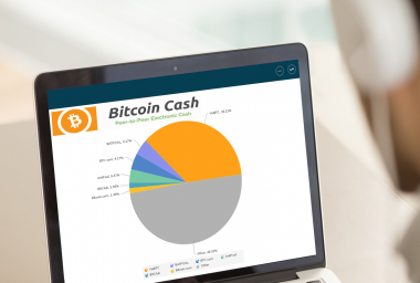 Bitcoin Cash Now Commands Over 20% of BTC's Total Hashrate