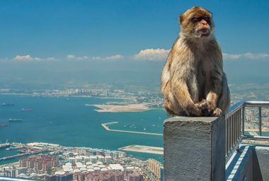 Gibraltar Paves Way for Regulation of Crypto and DLT Companies