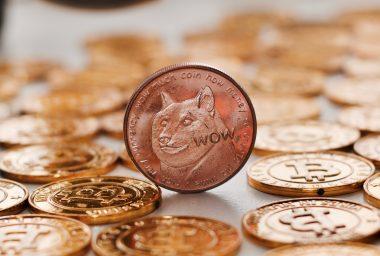 Dogecoin Developers Lament Billion Dollar Market Cap Milestone