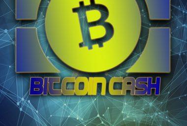 ABC Developer Amaury Séchet on the Future of Bitcoin Cash