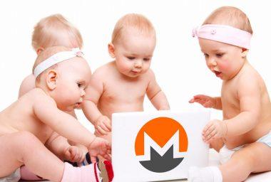 Privacy-Centric Coin XMR Splits Into Four Different Monero Protocols