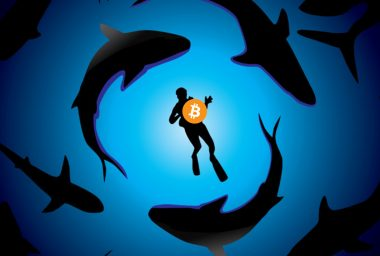 Inside the Competitive World of OTC Bitcoin Trading