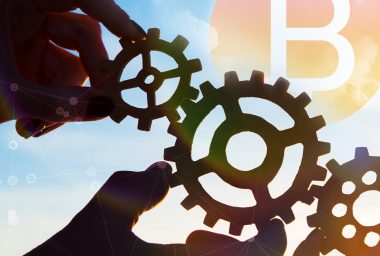 Holacracy: Governance in an Age of Innovation and Subversion