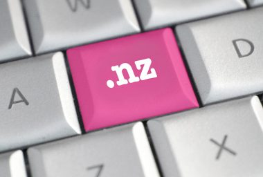 BTC-e Successor Wex Loses .nz Domain