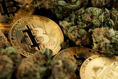 Relm Launches Insurance Coverage for Cryptocurrency and Cannabis Groups in Tough Regulatory Climate