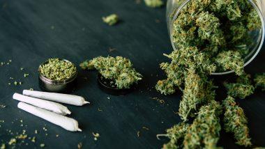 Lockdown Life & Darknets: BTC Still the DNM King, Cashaa's Stolen Coins Sent to Hydra, Cannabis Sales Surge