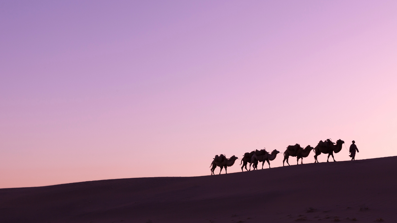 $1 Billion Silk Road Bitcoin Moves for First Time in Five Years